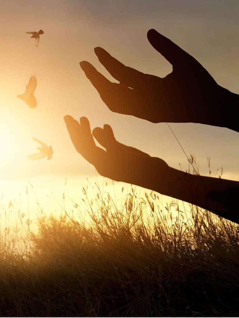 A Longing for Something More | Spirituality & Addiction